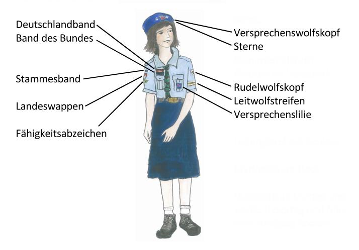 Kluftabzeichen (3)